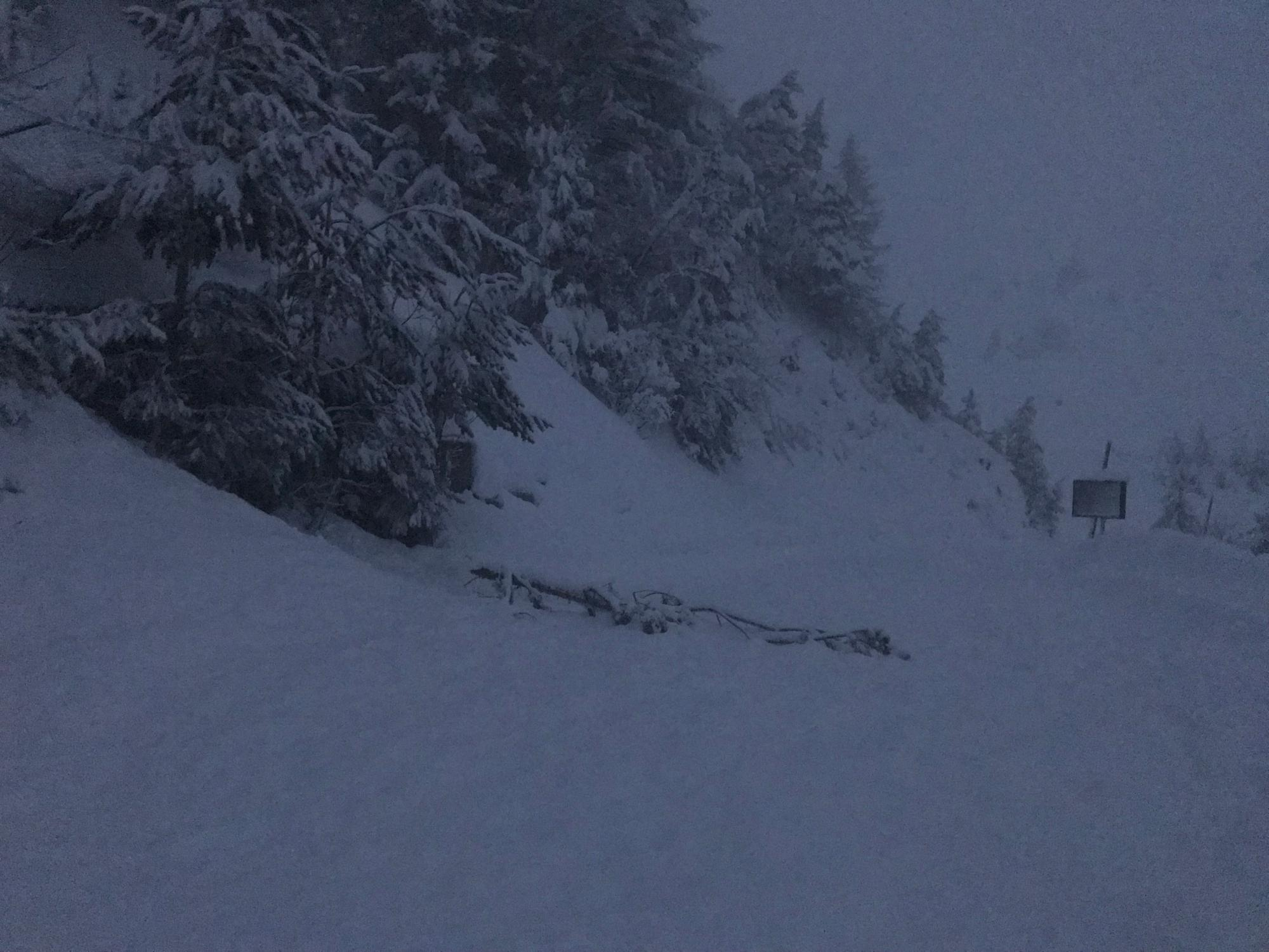 Avalanche ARVAN - villard - Photo 1